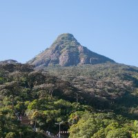 Adams peak, Ratnapura, Sri lankaудалитьредактировать :: Ксения Студеникина