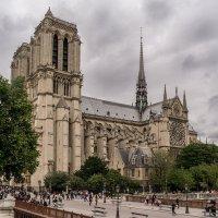 Прогулка по Парижу... Нотр- Дам :: igor