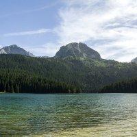 Черное озеро :: Marina Talberga