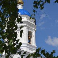Астраханские пейзажи :: Ксения Пышненко