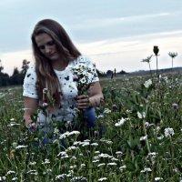 В поле за ромашками :: Шура Еремеева