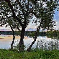 Вечер  на  пруду. :: Валера39 Василевский.