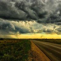 Дорога в дождь :: Юрий Фёдоров
