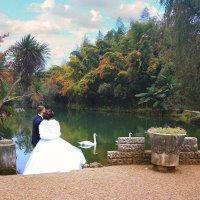 Свадьба в Сочи :: Алексей Марчук