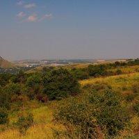 Летний день на южном склоне г. Бештау. Вид на гору Шелудивая и г. Лермонтов :: Vladimir 070549