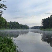 Утро на реке :: Kliwo