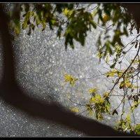 Осенью. :: Слава Славуцкий