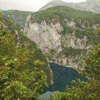 Каньон реки Пива :: Gennadiy Karasev