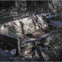 Decay :: Павел Самарович