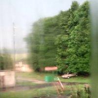 Летний дождь :: Николай Филоненко
