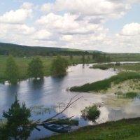 Река Битюг в селе Шестаково. :: Ольга Кривых