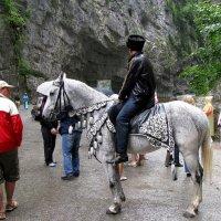 Горец  на коне... :: Валерия  Полещикова