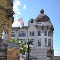 Белградские улицы :: Ольга