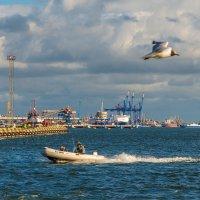 На Куршском заливе :: Леонид Соболев