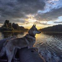 Морячка на закате :: Борис Устюжанин