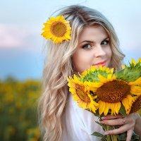 цветы солнца :: Алена Колошва