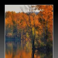 Времена  года.Осень :: Гриша  6х9 или 9х12