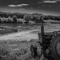 Трактор. :: Валерий Саломатин