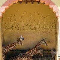 Жирафная семья :: Ольга Васильева
