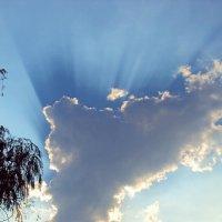 Солнца яркого лучи из-за облака видны. :: Анатолий
