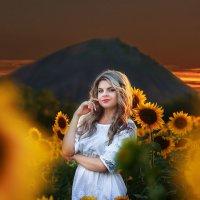 осколки солнечного дня :: Алена Колошва