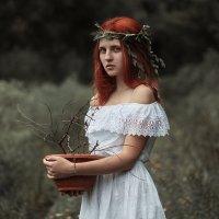 my flowers :: Viktoriya Vik