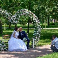 Скамейка для свадебных фотографов в парке. :: Сергей Хомич