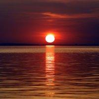 Белое солнце :: Елена Шемякина