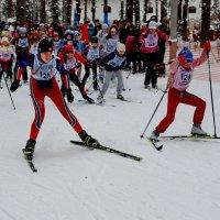 Лыжня России :: Валерий Толмачев