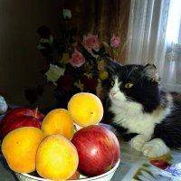 Марго и фрукты :: Татьяна