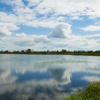 На озере :: Николай Мальцев