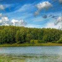 Озеро, чайки и тишина :: Милешкин Владимир Алексеевич