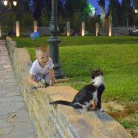 Кот: - ооо он как я умеет!!! :: Оля Богданович