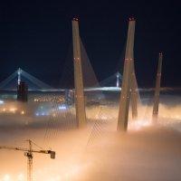 мосты Владивостока в тумане :: Sofia Rakitskaia