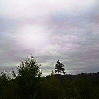 Забайкальское небо3 :: Антонида Михайлова