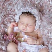 Малышка Мими :: Рола Kарут