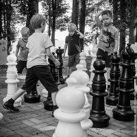 Шахматисты :: Николай Велицкий