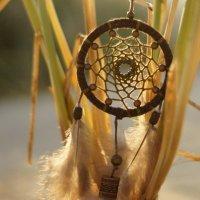 Ловец снов :: Roamer Pon