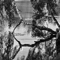 Рыбак :: Владимир Брагилевский