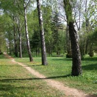 Ботанический сад :: Галина Бобкина