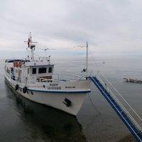 Кораблик :: Татьяна Нижаде