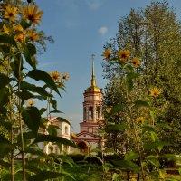 Сквозь осень :: Olcen - Ольга Лён