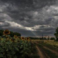 Небо :: Irina Polkova