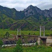 Ороктойский  мост  через  Катунь. :: Vlad Borschev