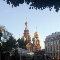 Спас на крови Санкт- Петербург :: Наталья Куклина