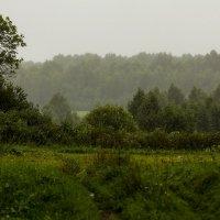 Дождливо :: Александр