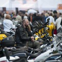 St.Petersburg Harley® Days2016 :: Владимир Питерский