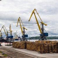 Морской порт :: Нина Червякова