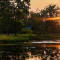 Закатный луч :: vladimir