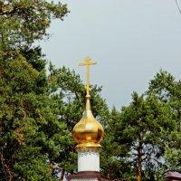 Купола в Жуковском :: Лидия (naum.lidiya)